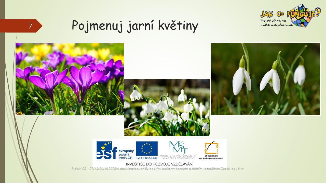 Pojmenuj jarní květiny Projekt CZ.1.07/1.3.00/48.0075 je spolufinancován Evropským sociálním fondem a státním rozpočtem České republiky.