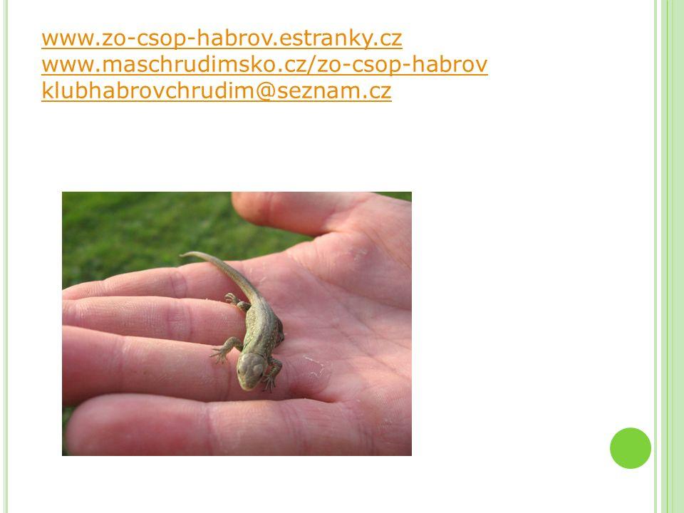 DĚKUJI ZA POZORNOST www.zo-csop-habrov.estranky.cz www.maschrudimsko.cz/zo-csop-habrov klubhabrovchrudim@seznam.cz www.zo-csop-habrov.estranky.cz www.