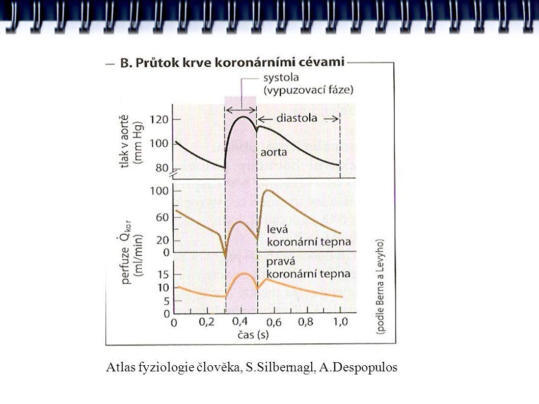 Atlas fyziologie člověka, S.Silbernagl, A.Despopulos