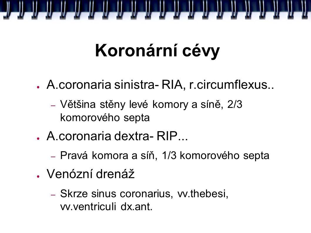 Koronární cévy ● A.coronaria sinistra- RIA, r.circumflexus..