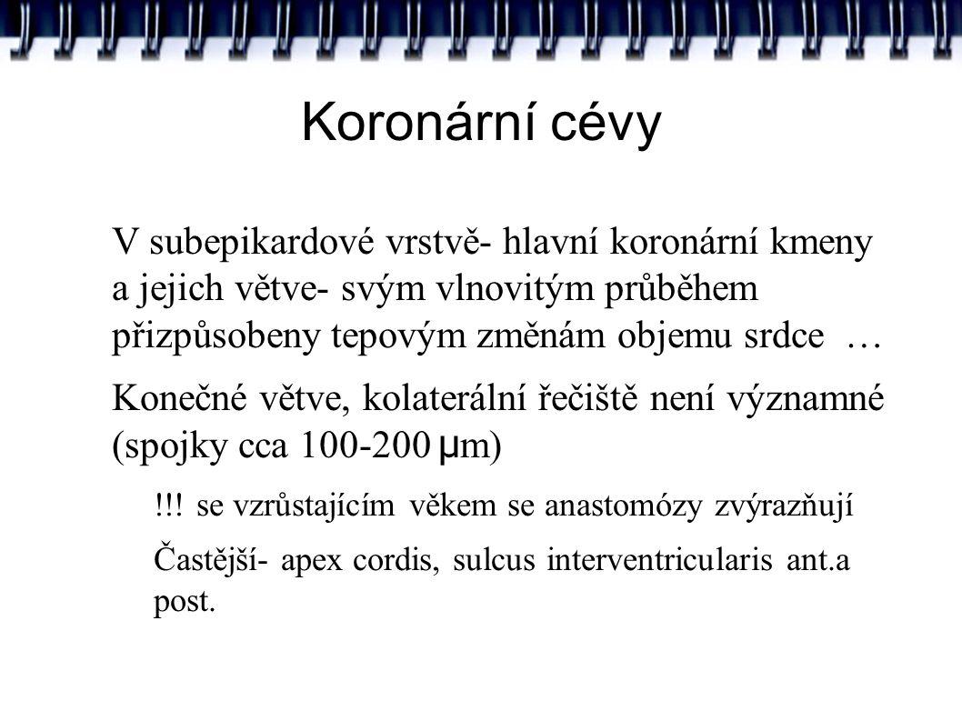 Koronární cévy Textbook of Medical Physiology, Guyton&Hall Textbook of Medical Physiology, Guyton & Hall