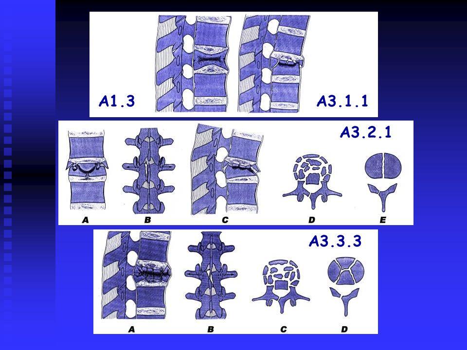 A3.2.1 A3.3.3 A1.3A3.1.1
