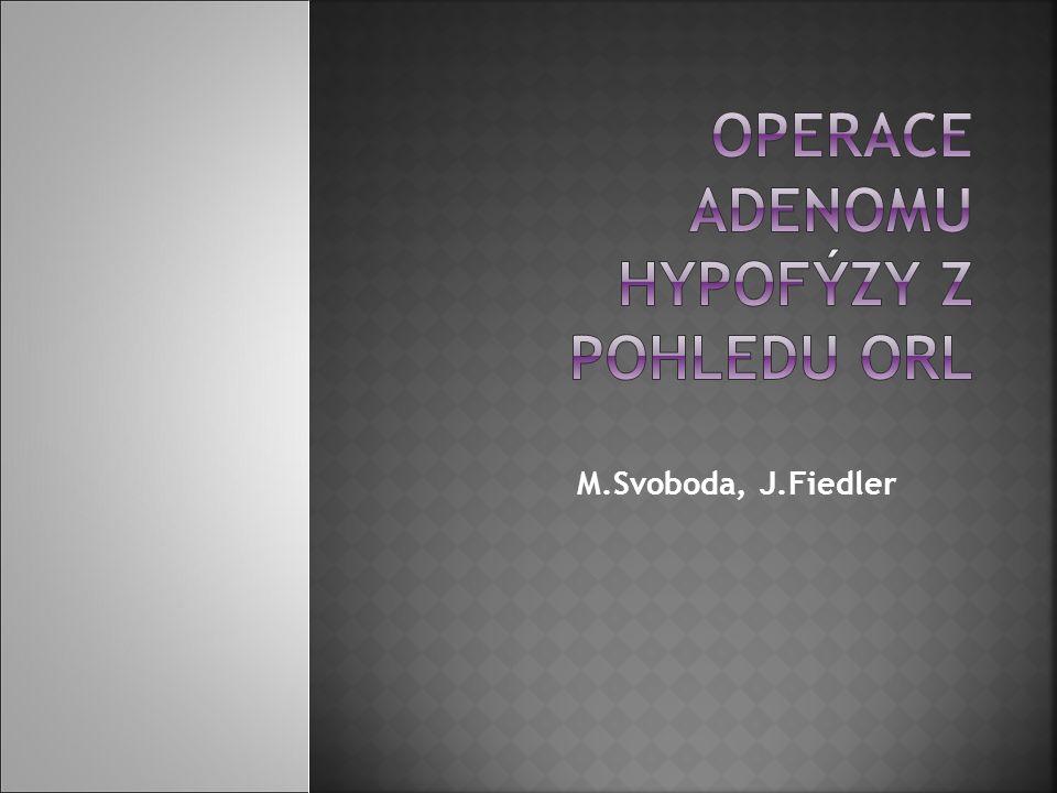 M.Svoboda, J.Fiedler