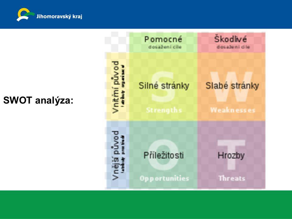 SWOT analýza: