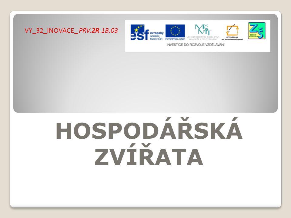 HOSPODÁŘSKÁ ZVÍŘATA VY_32_INOVACE_ PRV.2R.1B.03