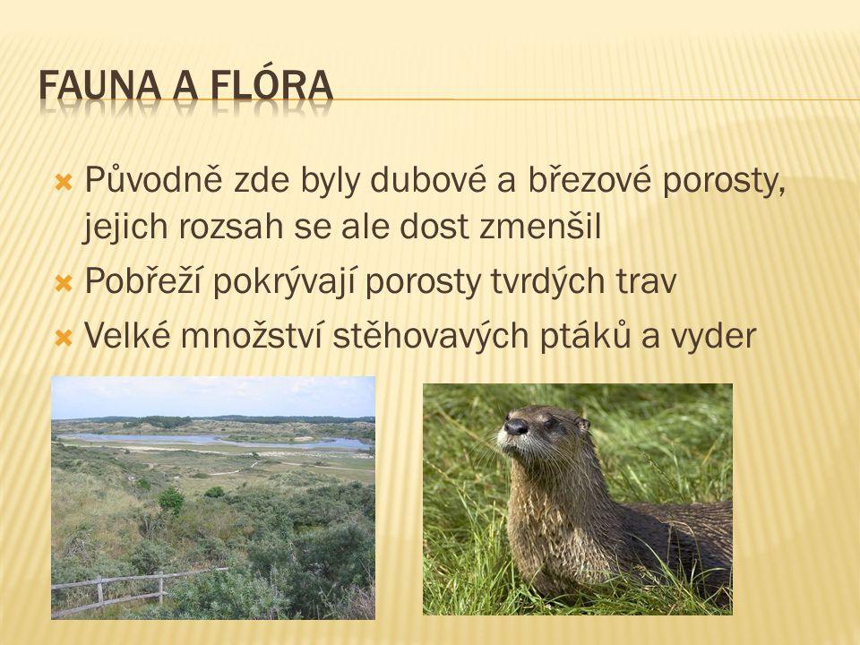  Původně zde byly dubové a březové porosty, jejich rozsah se ale dost zmenšil  Pobřeží pokrývají porosty tvrdých trav  Velké množství stěhovavých ptáků a vyder