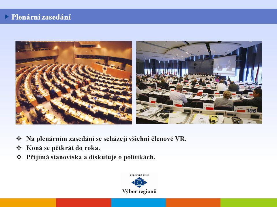  Na plenárním zasedání se scházejí všichni členové VR.