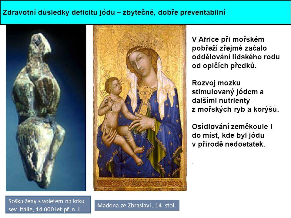 Soška ženy s voletem na krku sev. Itálie, 14.000 let př. n. l V Africe při mořském pobřeží zřejmě začalo oddělování lidského rodu od opičích předků. R
