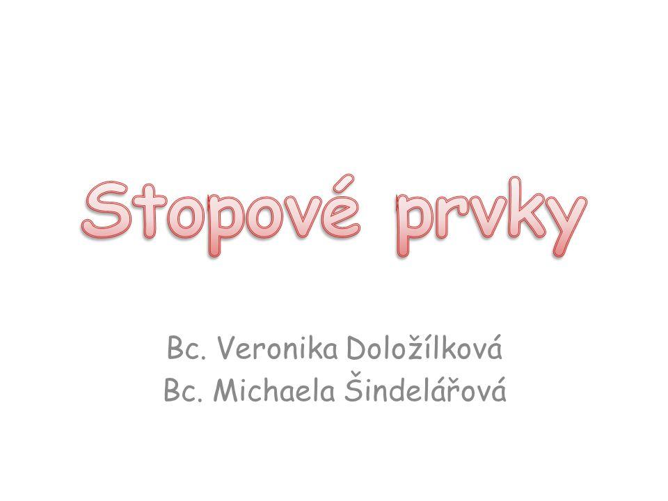 Bc. Veronika Doložílková Bc. Michaela Šindelářová