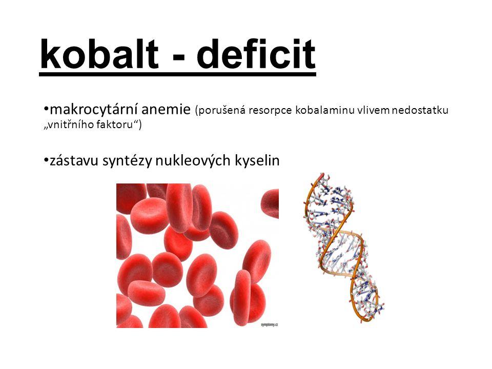 """kobalt - deficit makrocytární anemie (porušená resorpce kobalaminu vlivem nedostatku """"vnitřního faktoru ) zástavu syntézy nukleových kyselin"""