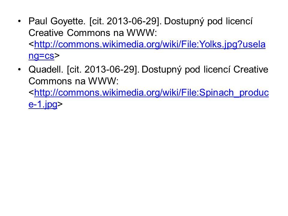 Paul Goyette. [cit. 2013-06-29].