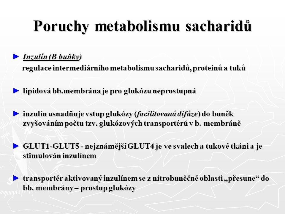 Poruchy metabolismu sacharidů ► Inzulín (B buňky) regulace intermediárního metabolismu sacharidů, proteinů a tuků regulace intermediárního metabolismu