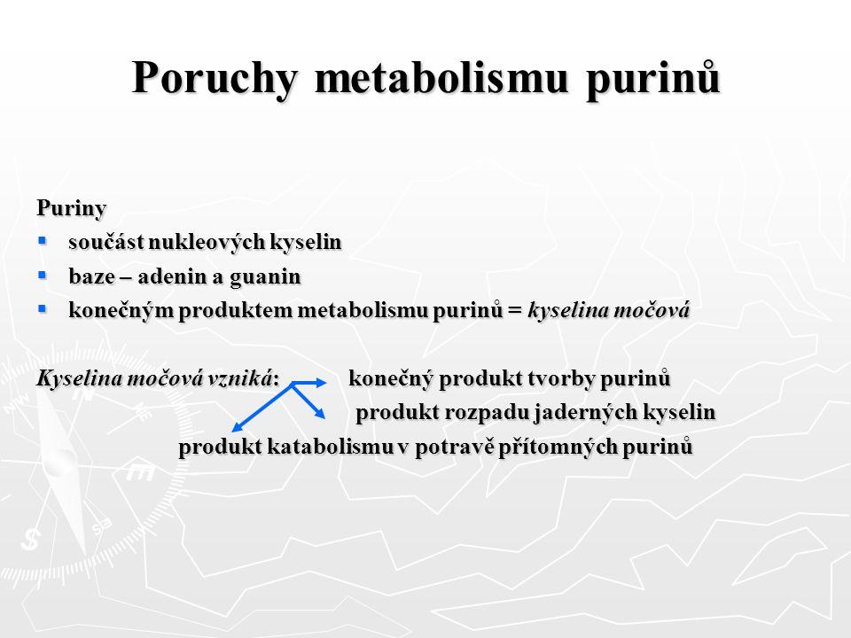 Poruchy metabolismu purinů Puriny  součást nukleových kyselin  baze – adenin a guanin  konečným produktem metabolismu purinů = kyselina močová Kyse