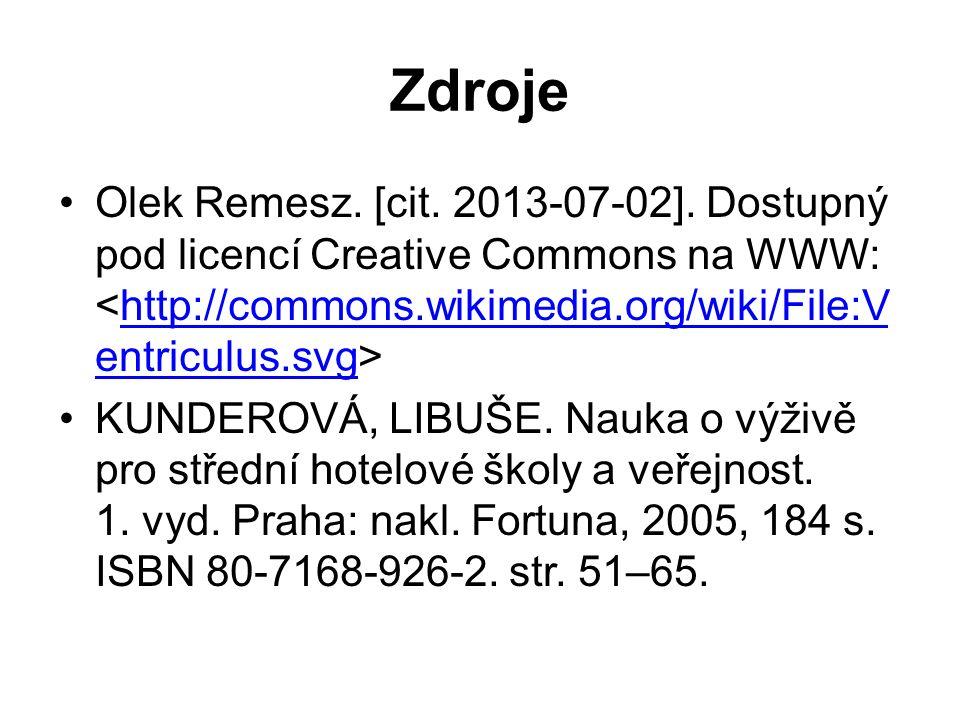 Zdroje Olek Remesz. [cit. 2013-07-02].