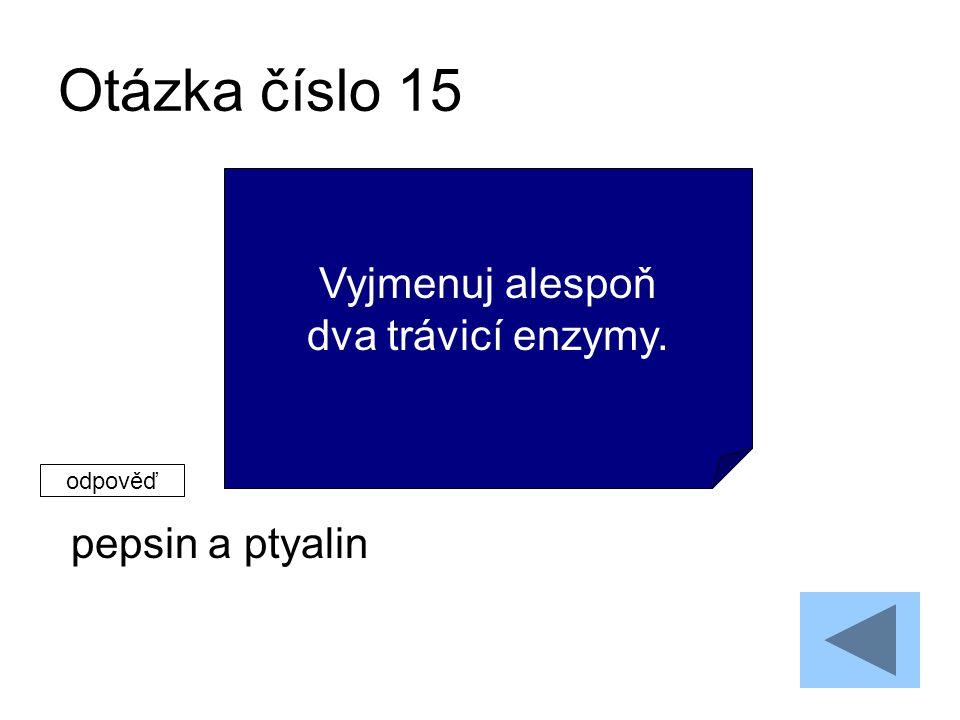 Otázka číslo 15 pepsin a ptyalin Vyjmenuj alespoň dva trávicí enzymy. odpověď