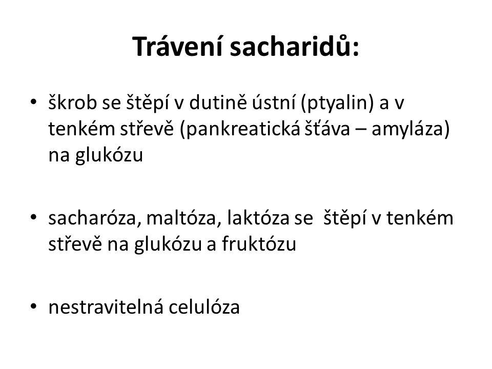 Trávení sacharidů: škrob se štěpí v dutině ústní (ptyalin) a v tenkém střevě (pankreatická šťáva – amyláza) na glukózu sacharóza, maltóza, laktóza se štěpí v tenkém střevě na glukózu a fruktózu nestravitelná celulóza