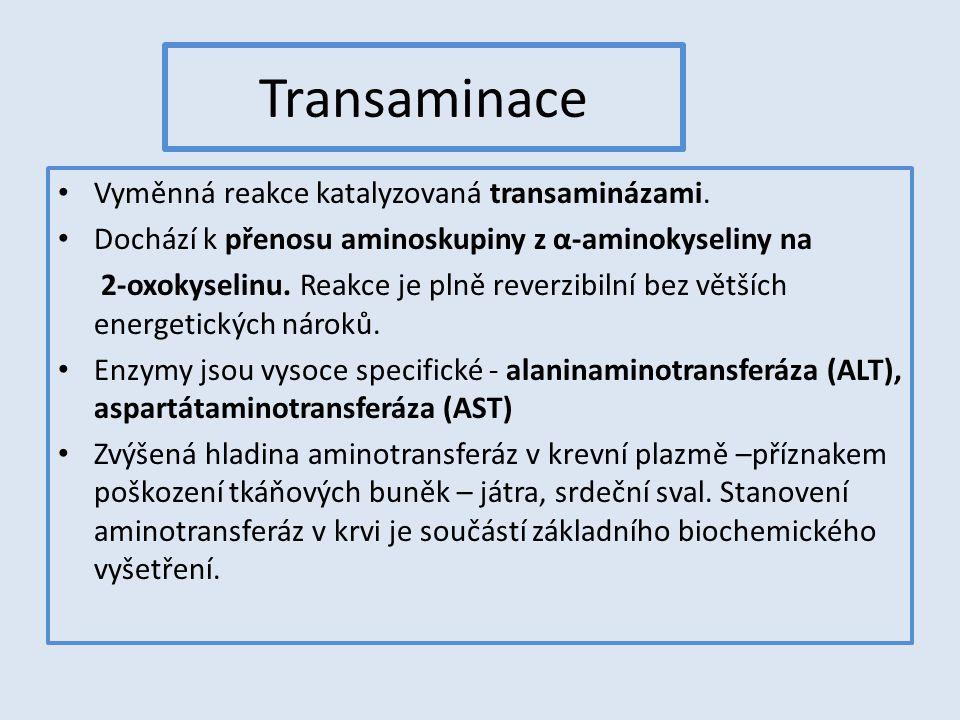 Transaminace Vyměnná reakce katalyzovaná transaminázami. Dochází k přenosu aminoskupiny z α-aminokyseliny na 2-oxokyselinu. Reakce je plně reverzibiln