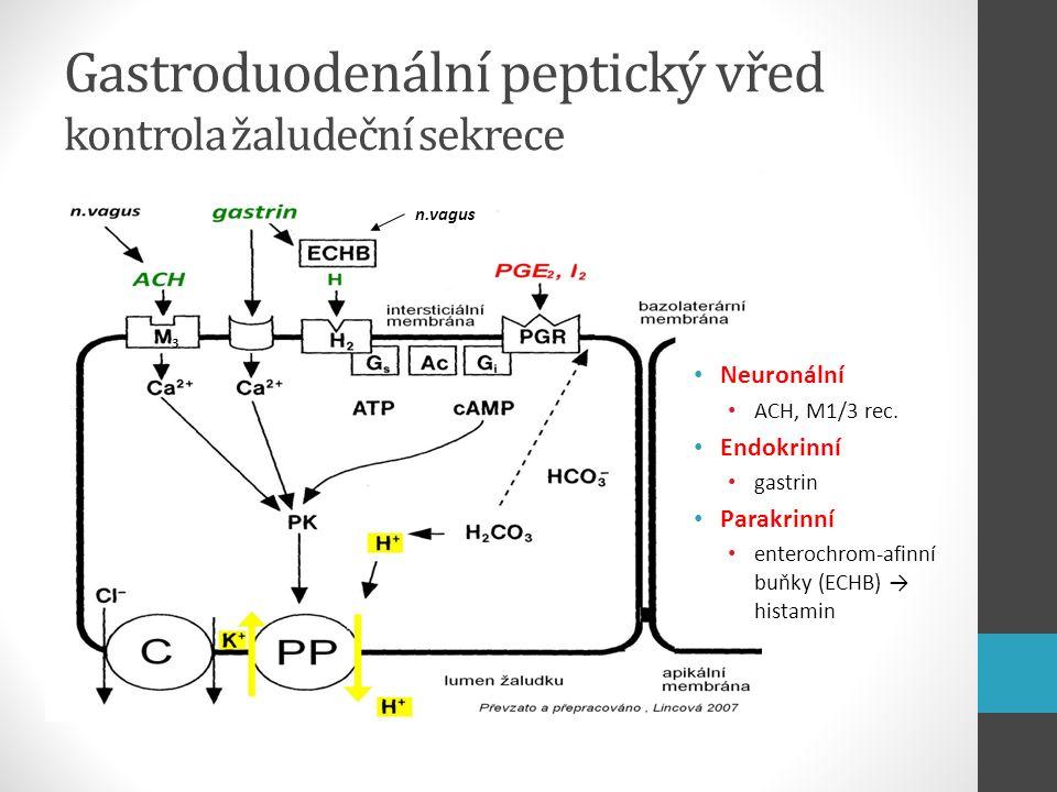 Gastroduodenální peptický vřed kontrola žaludeční sekrece 33 n.vagus Neuronální ACH, M1/3 rec. Endokrinní gastrin Parakrinní enterochrom-afinní buňky