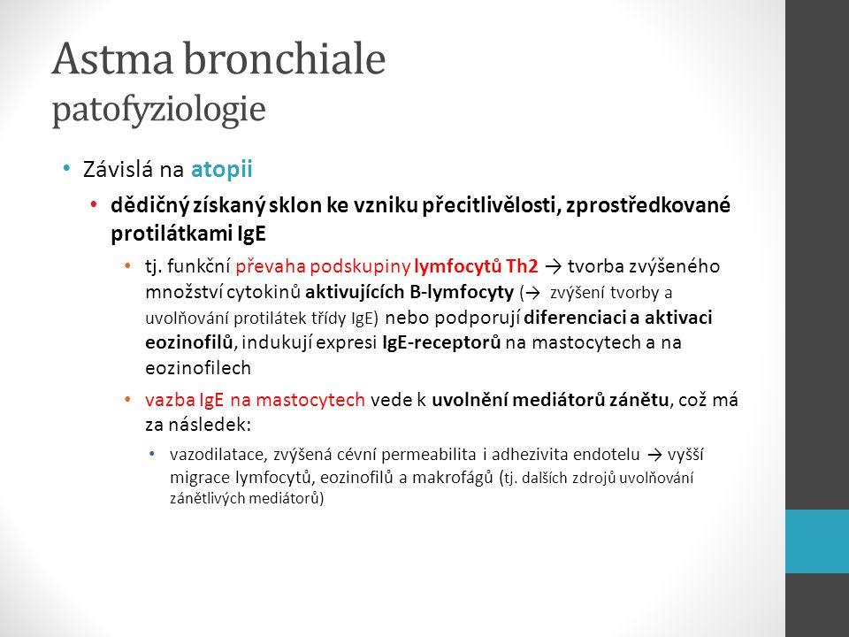 Astma bronchiale patofyziologie Závislá na atopii dědičný získaný sklon ke vzniku přecitlivělosti, zprostředkované protilátkami IgE tj. funkční převah