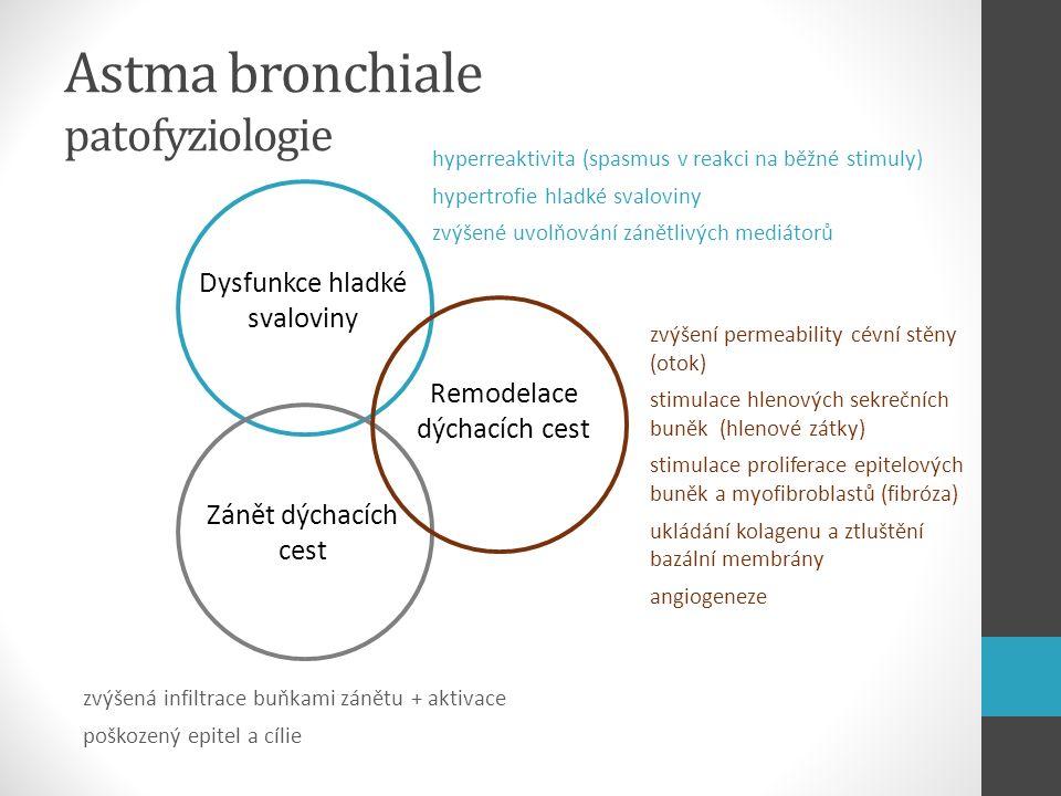 Astma bronchiale patofyziologie Dysfunkce hladké svaloviny Zánět dýchacích cest Remodelace dýchacích cest zvýšení permeability cévní stěny (otok) stim