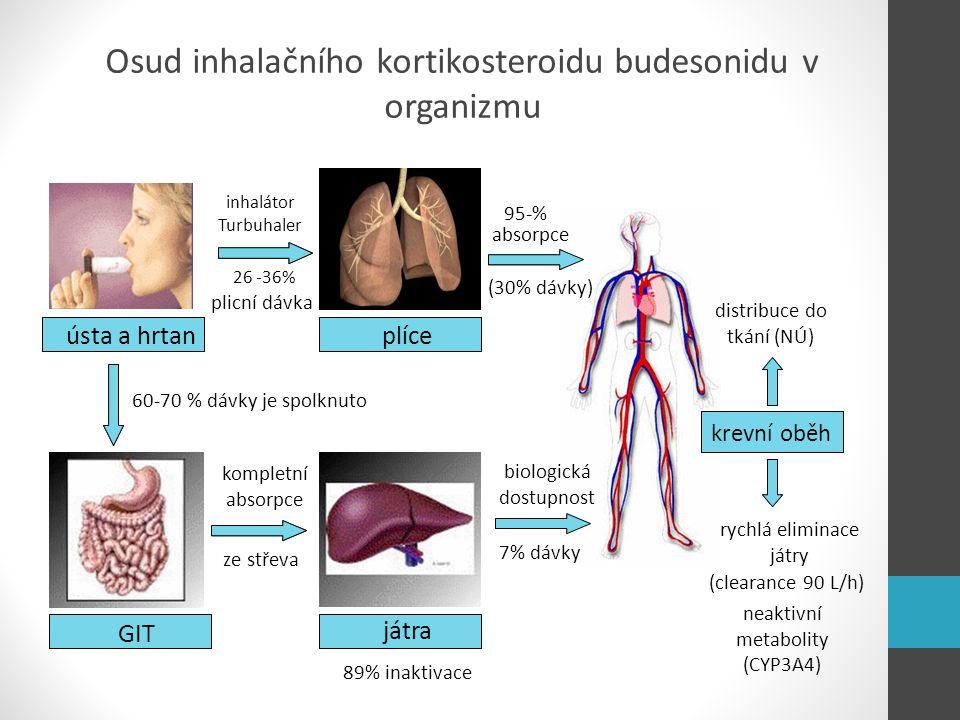 Osud inhalačního kortikosteroidu budesonidu v organizmu ústa a hrtan GITjátra plíce krevní oběh ústa a hrtan GIT játra plíce 60-70 % dávky je spolknut