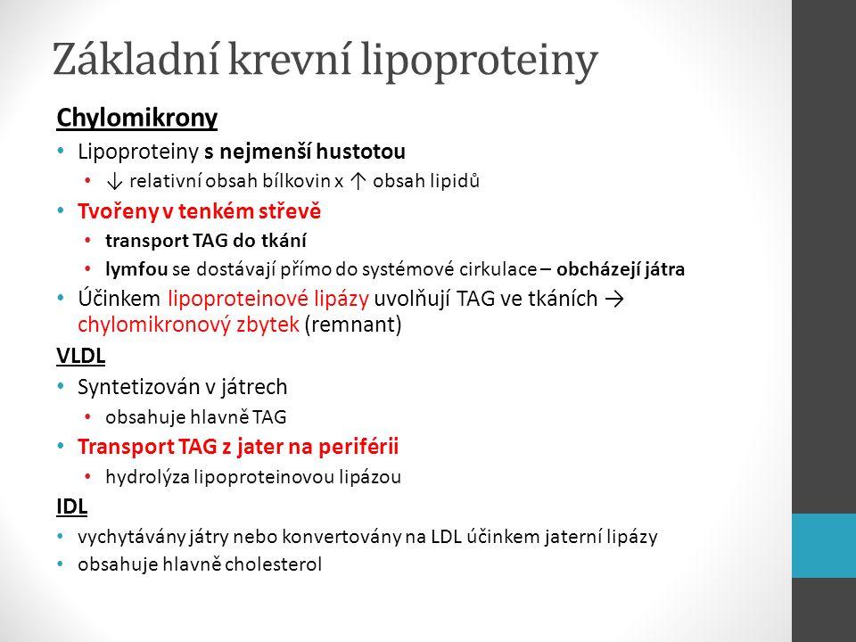 Základní krevní lipoproteiny LDL Vznikají v krevním řečišti z VLDL (pomocí HDL) Přenášejí hlavně estery cholesterolu do buněk na periférii (stavební prvky biomembrán, syntéza steroidů) a do jater Významné ve vzniku a rozvoji aterosklerózy hlavně podtyp LDL-3 Vychytáván z oběhu vazbou na specifický LDL-receptor (v játrech i extrahepatických tkáních) → endocytóza deficience LDL-receptoru → familiární hypercholesterolémie HDL Prekurzory HDL tvořené v játrech → v oběhu konvertovány na HDL Významná role v metabolismu chylomikronů a VLDL Na periférii vážou volný cholesterol → esterifikace → přenos do jater prostřednictvím nízkodenzitní partikule Protektivní antiaterogenní efekt