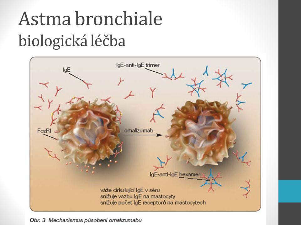 Astma bronchiale biologická léčba