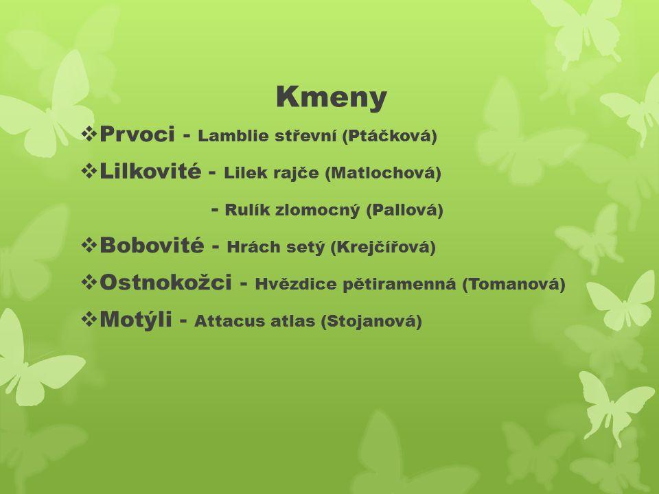 Kmeny  Prvoci - Lamblie střevní (Ptáčková)  Lilkovité - Lilek rajče (Matlochová) - Rulík zlomocný (Pallová)  Bobovité - Hrách setý (Krejčířová)  Ostnokožci - Hvězdice pětiramenná (Tomanová)  Motýli - Attacus atlas (Stojanová)