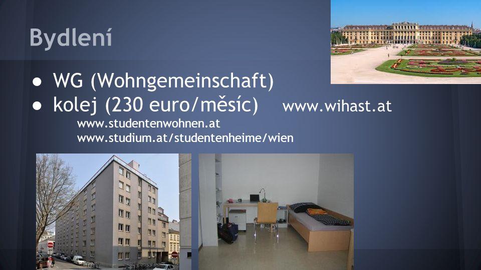 Bydlení ● WG (Wohngemeinschaft) ● kolej (230 euro/měsíc) www.wihast.at www.studentenwohnen.at www.studium.at/studentenheime/wien