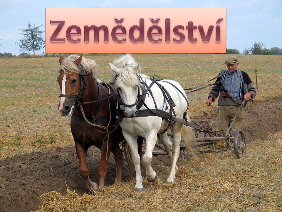http://cs.wikipedia.org/wiki/Olomouck%C3%BD_kraj#mediaviewer/File:Sternberk_hr ad_1.jpg http://cs.wikipedia.org/wiki/Prad%C4%9Bd#mediaviewer/File:Altvater_-_OT.JPG http://cs.wikipedia.org/wiki/Olomouck%C3%A9_tvar%C5%AF%C5%BEky#mediaview er/File:Tvar%C5%AF%C5%BEkov%C3%A9_mou%C4%8Dn%C3%ADky_1.JPG http://cs.wikipedia.org/wiki/Jeskyn%C4%9B#mediaviewer/File:Lechuguilla_Cave_Pea rlsian_Gulf.jpg http://cs.wikipedia.org/wiki/L%C3%A1zn%C4%9B_Jesen%C3%ADk#mediaviewer/File :L%C3%A1zn%C4%9B_Jesen%C3%ADk_%28Bad_Gr%C3%A4fenberg%29_- _Hotel_Priessnitz_-_vchod.jpg http://cs.wikipedia.org/wiki/Olomouck%C3%BD_kraj#mediaviewer/File:Sternberk_hr ad_1.jpg http://cs.wikipedia.org/wiki/Prad%C4%9Bd#mediaviewer/File:Altvater_-_OT.JPG http://cs.wikipedia.org/wiki/Olomouck%C3%A9_tvar%C5%AF%C5%BEky#mediaview er/File:Tvar%C5%AF%C5%BEkov%C3%A9_mou%C4%8Dn%C3%ADky_1.JPG http://cs.wikipedia.org/wiki/Jeskyn%C4%9B#mediaviewer/File:Lechuguilla_Cave_Pea rlsian_Gulf.jpg http://cs.wikipedia.org/wiki/L%C3%A1zn%C4%9B_Jesen%C3%ADk#mediaviewer/File :L%C3%A1zn%C4%9B_Jesen%C3%ADk_%28Bad_Gr%C3%A4fenberg%29_- _Hotel_Priessnitz_-_vchod.jpg Použité odkazy: obrázky: