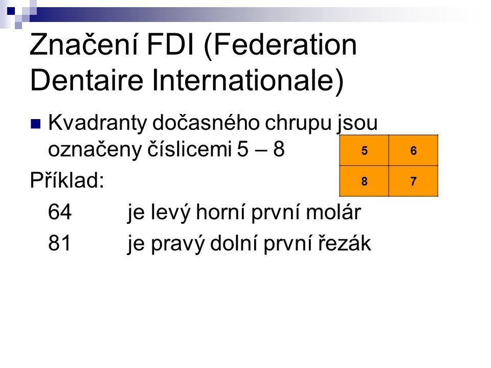 Značení FDI (Federation Dentaire Internationale) Kvadranty dočasného chrupu jsou označeny číslicemi 5 – 8 Příklad: 64je levý horní první molár 81je pravý dolní první řezák 56 87