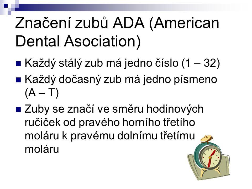 Značení zubů ADA (American Dental Asociation) Každý stálý zub má jedno číslo (1 – 32) Každý dočasný zub má jedno písmeno (A – T) Zuby se značí ve směru hodinových ručiček od pravého horního třetího moláru k pravému dolnímu třetímu moláru