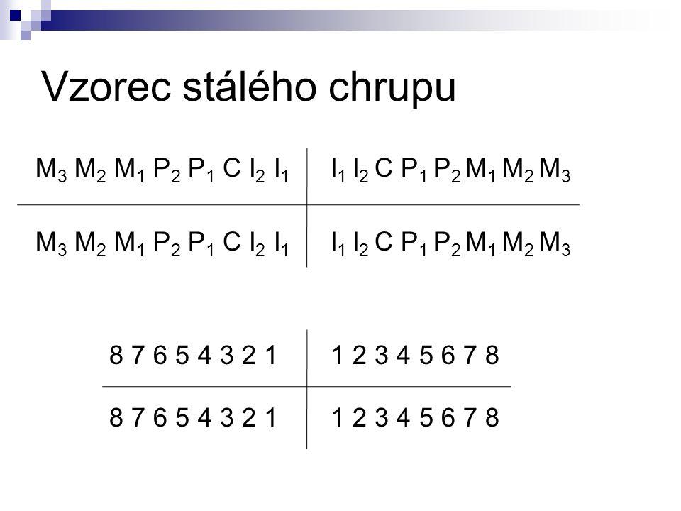 Vzorec stálého chrupu M 3 M 2 M 1 P 2 P 1 C I 2 I 1 8 7 6 5 4 3 2 1 I 1 I 2 C P 1 P 2 M 1 M 2 M 3 M 3 M 2 M 1 P 2 P 1 C I 2 I 1 1 2 3 4 5 6 7 8 8 7 6 5 4 3 2 1