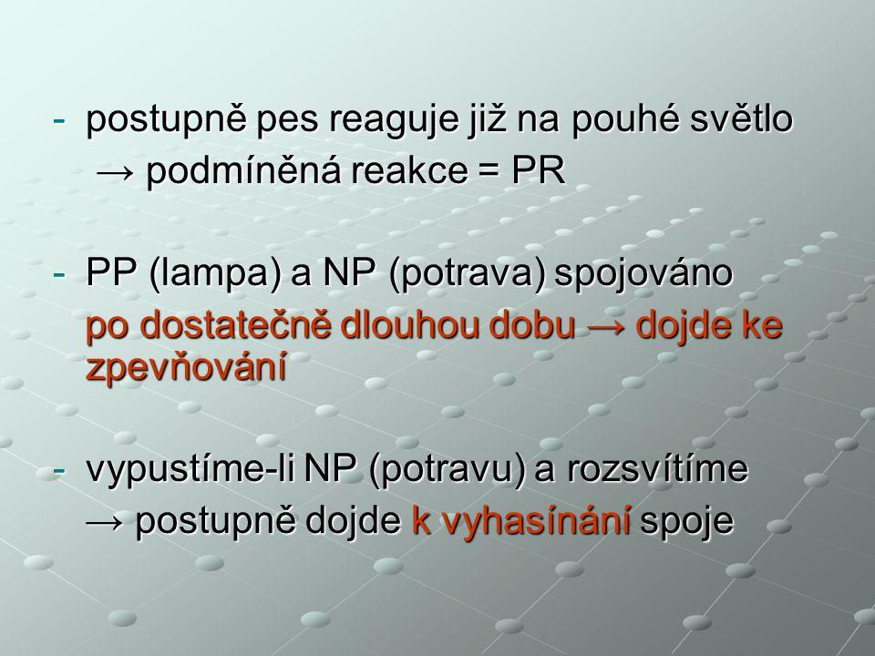 -postupně pes reaguje již na pouhé světlo → podmíněná reakce = PR → podmíněná reakce = PR -PP (lampa) a NP (potrava) spojováno po dostatečně dlouhou dobu → dojde ke zpevňování po dostatečně dlouhou dobu → dojde ke zpevňování -vypustíme-li NP (potravu) a rozsvítíme → postupně dojde k vyhasínání spoje → postupně dojde k vyhasínání spoje