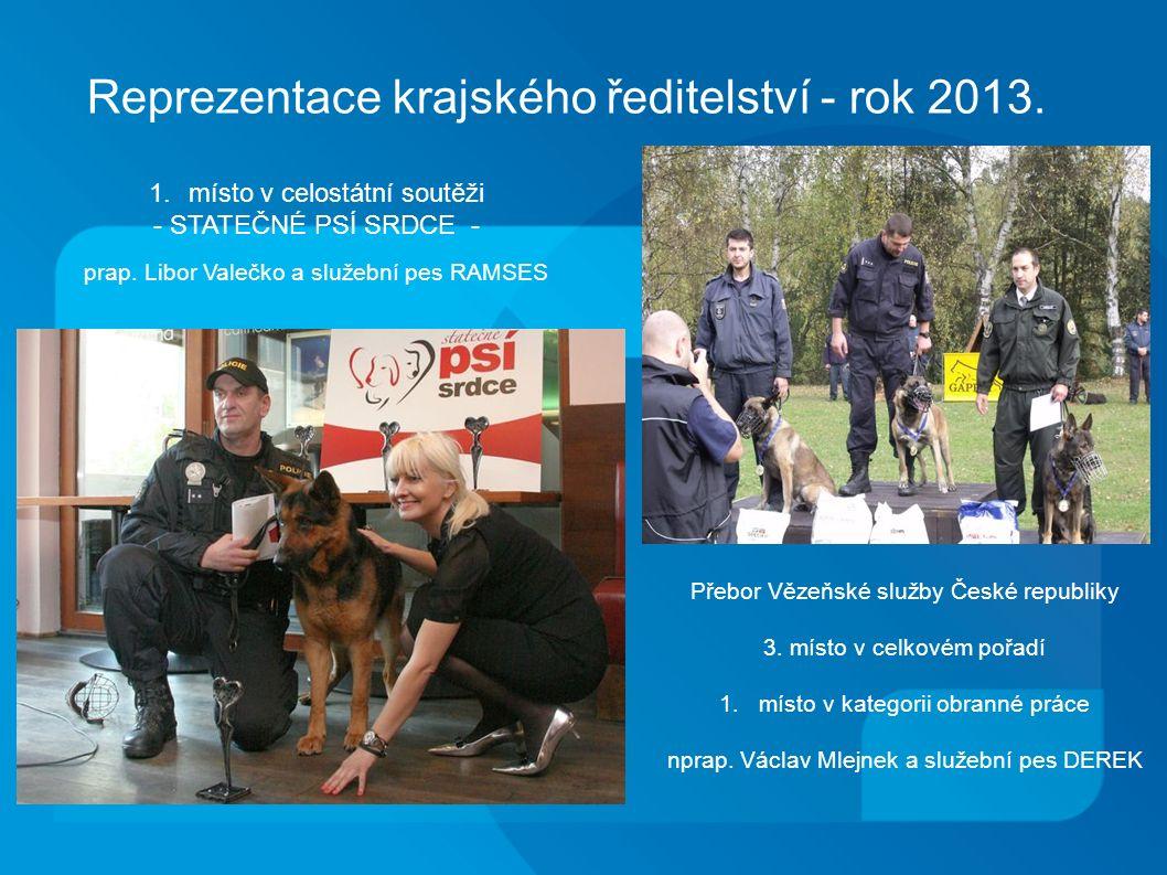 Reprezentace krajského ředitelství - rok 2013.