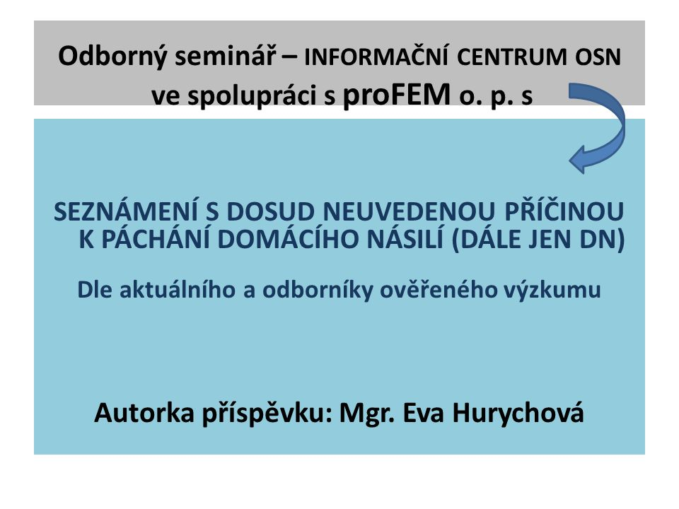 Odborný seminář – INFORMAČNÍ CENTRUM OSN ve spolupráci s proFEM o.