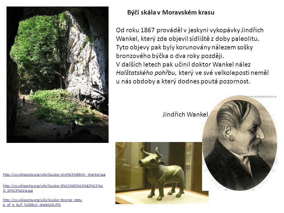 http://cs.wikipedia.org/wiki/Soubor:B%C3%BD%C4%8D%C3%A D_sk%C3%A1la.jpg Býčí skála v Moravském krasu http://cs.wikipedia.org/wiki/Soubor:Jind%C5%99ich_Wankel.jpg http://cs.wikipedia.org/wiki/Soubor:Bronze_statu e_of_a_bull_%28Byci_skala%29.JPG Od roku 1867 prováděl v jeskyni vykopávky Jindřich Wankel, který zde objevil sídliště z doby paleolitu.