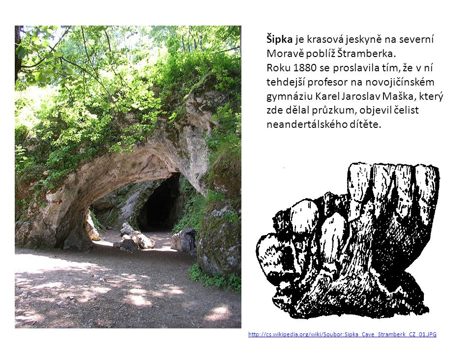 Šipka je krasová jeskyně na severní Moravě poblíž Štramberka.
