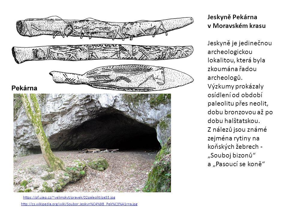 http://cs.wikipedia.org/wiki/Soubor:Jeskyn%C4%9B_Pek%C3%A1rna.jpg Jeskyně Pekárna v Moravském krasu Jeskyně je jedinečnou archeologickou lokalitou, která byla zkoumána řadou archeologů.