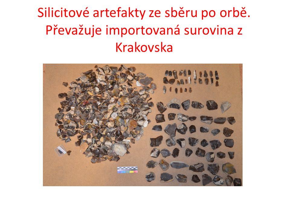 Silicitové artefakty ze sběru po orbě. Převažuje importovaná surovina z Krakovska