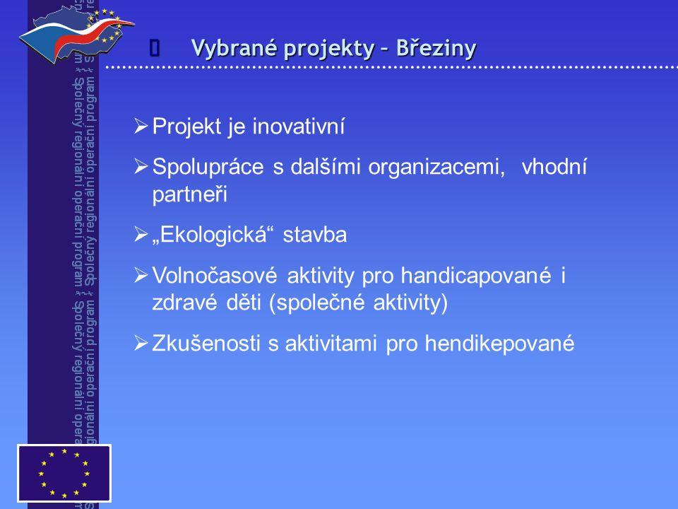 """ Vybrané projekty – Březiny  Projekt je inovativní  Spolupráce s dalšími organizacemi, vhodní partneři  """"Ekologická"""" stavba  Volnočasové aktivity"""