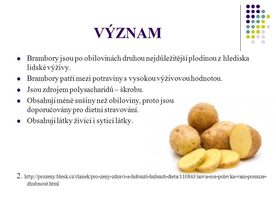 VÝZNAM Brambory jsou po obilovinách druhou nejdůležitější plodinou z hlediska lidské výživy.