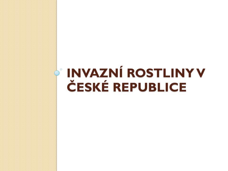 INVAZNÍ ROSTLINY V ČESKÉ REPUBLICE