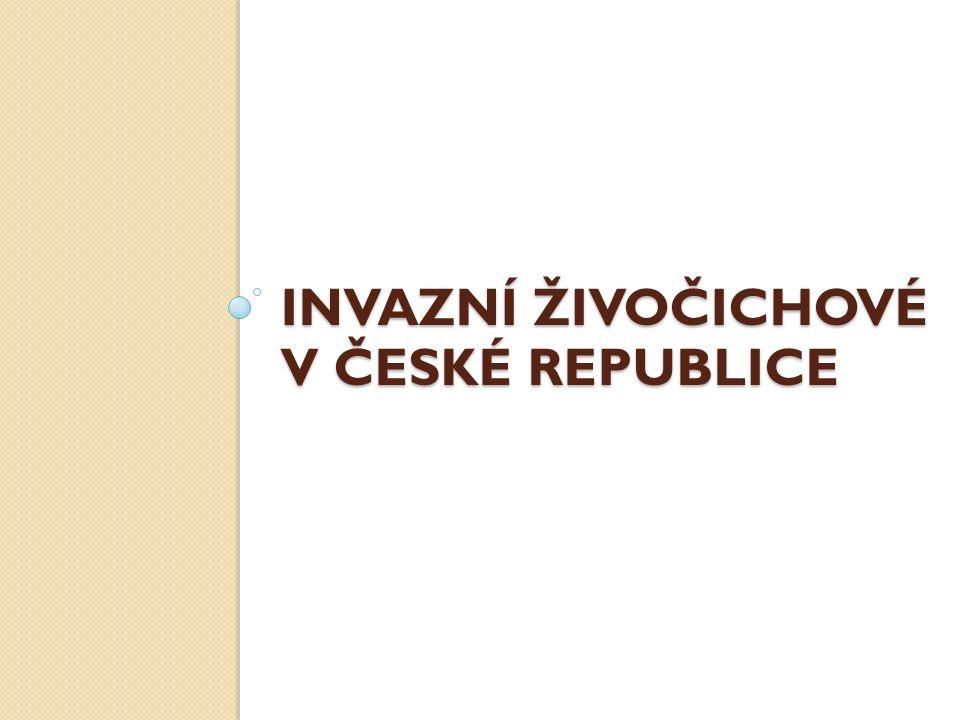INVAZNÍ ŽIVOČICHOVÉ V ČESKÉ REPUBLICE