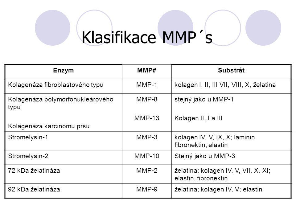 EnzymMMP#Substrát Kolagenáza fibroblastového typuMMP-1kolagen I, II, III VII, VIII, X, želatina Kolagenáza polymorfonukleárového typu Kolagenáza karci