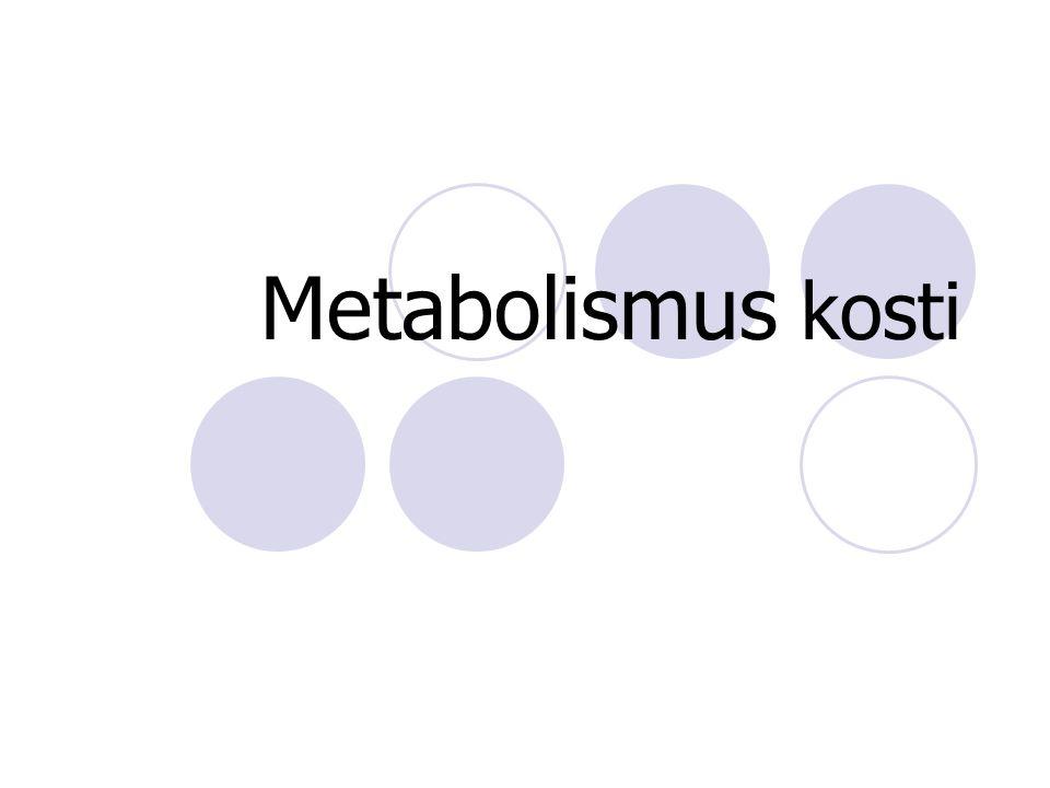 Metabolismus kosti