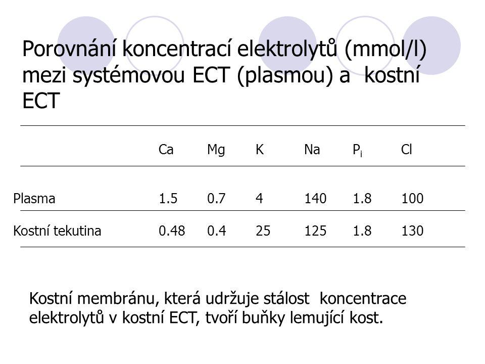 CaMgKNaP i Cl Plasma1.50.741401.8100 Kostní tekutina0.480.4251251.8130 Porovnání koncentrací elektrolytů (mmol/l) mezi systémovou ECT (plasmou) a kostní ECT Kostní membránu, která udržuje stálost koncentrace elektrolytů v kostní ECT, tvoří buňky lemující kost.