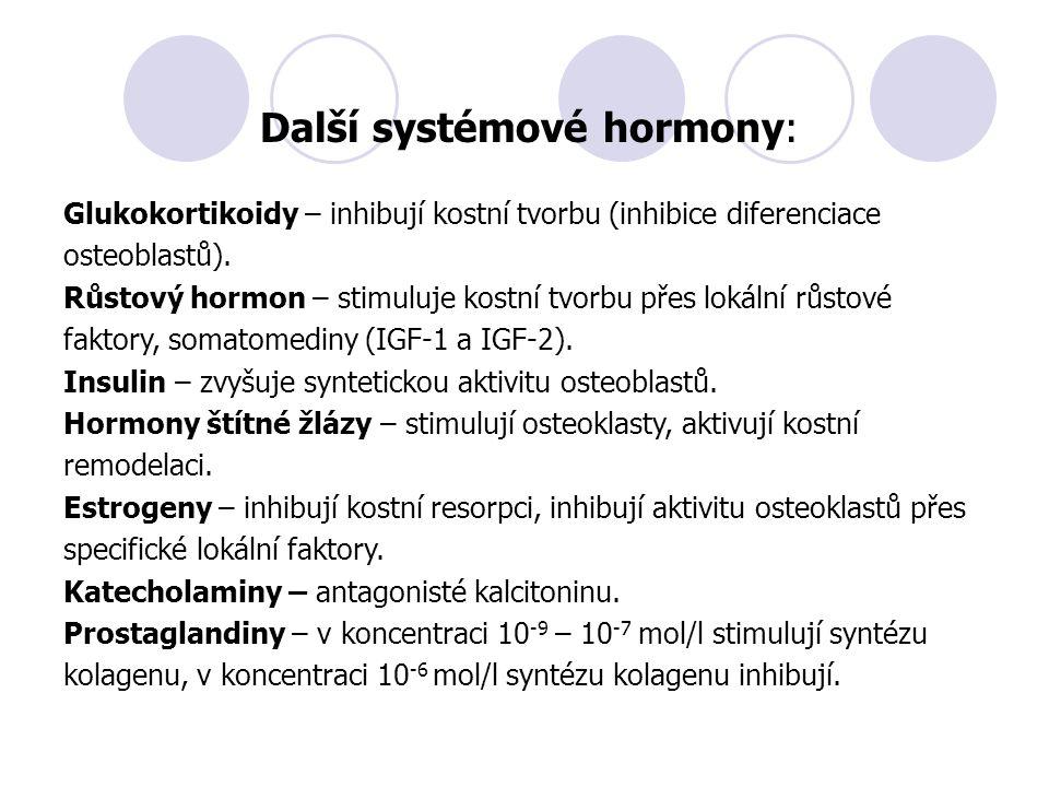 Další systémové hormony: Glukokortikoidy – inhibují kostní tvorbu (inhibice diferenciace osteoblastů). Růstový hormon – stimuluje kostní tvorbu přes l