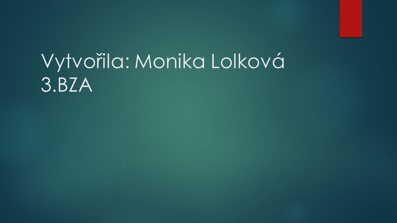 Vytvořila: Monika Lolková 3.BZA