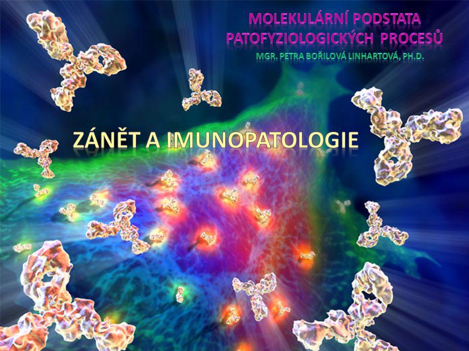 Obsah přednášky Nespecifická a specifická imunitní odpověď Zánět Regenerace vs.